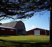 barn with a tree frame by KraZyGuy78