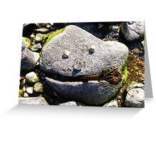 Nature Smiles to Us :) Greeting Card