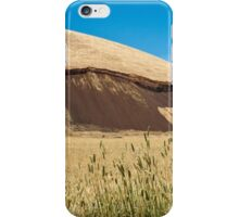 Elephant Rock iPhone Case/Skin