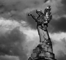 Light Angel/Dark Angel by dgt0011