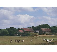 French countryside Photographic Print