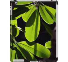 Evergreen Delight iPad Case/Skin