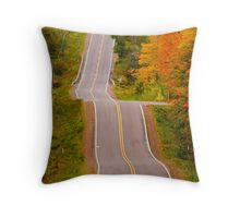 Drunk Driver Test Track Throw Pillow