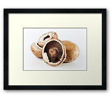 Brown Mushrooms Framed Print