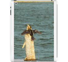 Drying Anhinga iPad Case/Skin