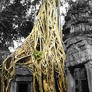 "Jungle Temple ""Siem Reap"" by hadstr"
