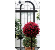 Christmas in the Conservatory iPhone Case/Skin