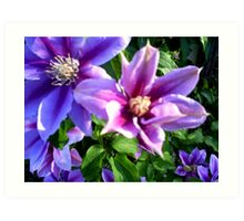 Simplistic Purple Art Print