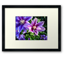 Simplistic Purple Framed Print