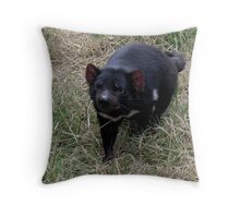 photoj animal, Tassie Devil Throw Pillow