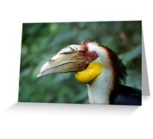 Hornbill Headshot Greeting Card