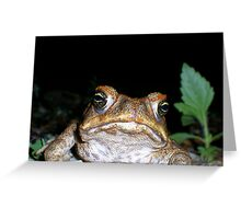 """toadally"" bored Greeting Card"