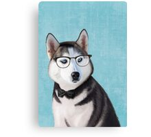 Mr Siberian Husky Canvas Print