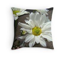 Daisy flower #2 Throw Pillow