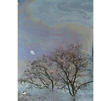 oil spill - a reflection Photographic Print