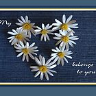 My Heart Belongs to You by Martie Venter