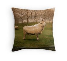 The Pride of Chester Throw Pillow