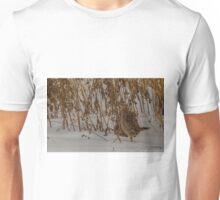 Hen Ring-necked Pheasant Unisex T-Shirt