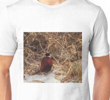 Winter Ring-Neck Pheasant Unisex T-Shirt