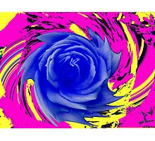 A rose is a rose.  Photographic Print