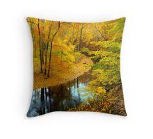 Ravine Path Throw Pillow
