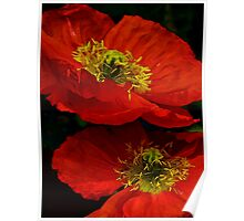 Hopping Poppies Poster