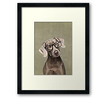 Mr Weimaraner Framed Print