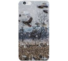 Double Snowstorm iPhone Case/Skin