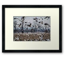 Double Snowstorm Framed Print