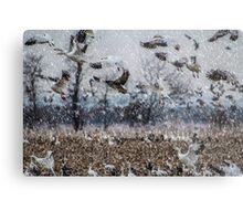 Double Snowstorm Metal Print