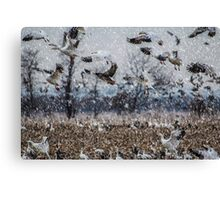 Double Snowstorm Canvas Print