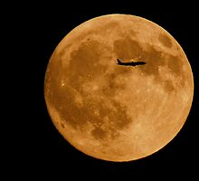 Fly Me To The Moon by Linda Karlin