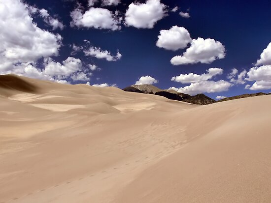 Colorado Sand Dunes by Rachel Leigh