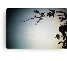 Tree & Sky Canvas Print