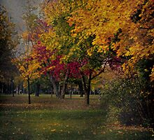 Colours of Melancholy by Idil