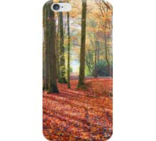Autumn in cambridgeshire woods iPhone Case/Skin