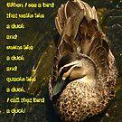 Walks Like a Duck...Quacks Like a Duck... by margotk