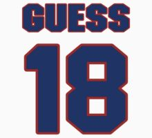 National football player Terry Guess jersey 18 by imsport