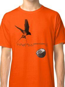Airspeed Velocity  Classic T-Shirt