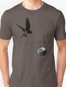 Airspeed Velocity  Unisex T-Shirt