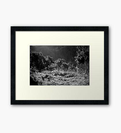Jersey Hillside Framed Print