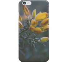 Hampstead Flower iPhone Case/Skin