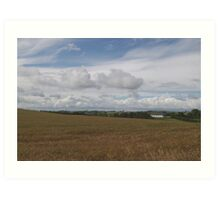 barleyfield1 Art Print