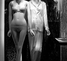 Fashion Statement by Robert Meyer