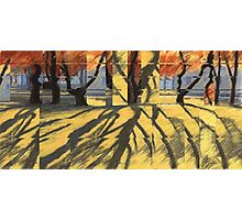 October -Quilt Photographic Print