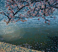 Cherry Blossom Time by Betty Mackey
