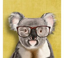 Mr Koala Photographic Print