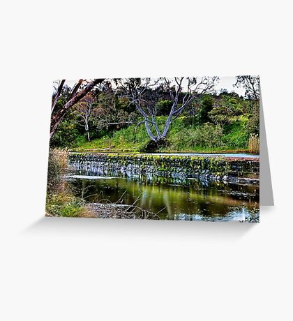 """Reflections Along  The Way"" Greeting Card"