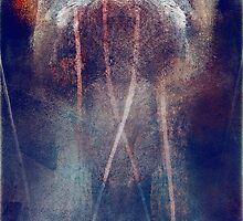 snares by Joseph Arruda