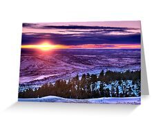 Winter's Rainbow Of Color Greeting Card